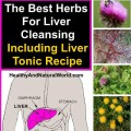 The best herbs for liver cleansing