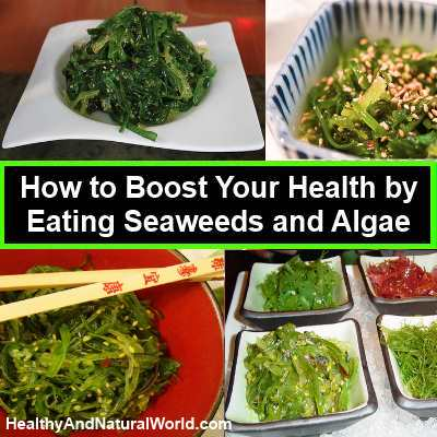 How to Boost Your Health by Eating Seaweeds and Algae