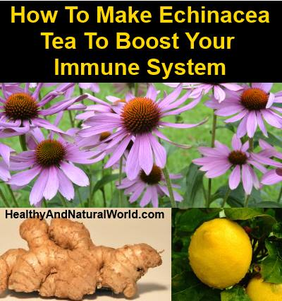 How To Make The Ultimate Tea To Boost Your Immune System