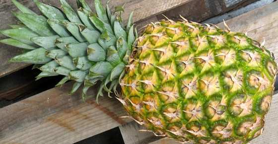 You Eat Pineapples, But You Have Probably Never Heard Of That
