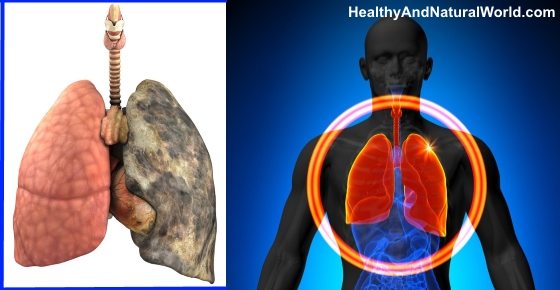 The Best Foods to Cleanse your Lungs