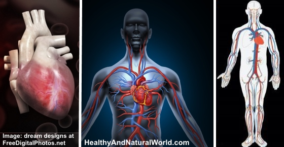 How to Improve Blood Circulation Naturally