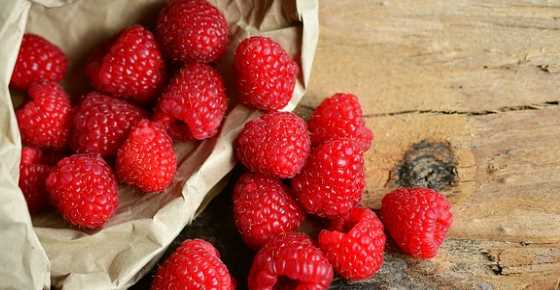 Raspberries: Nutrition Facts, Calories, Carbs, Proven Health Benefits