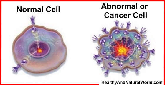 The Best Cooking Methods for Cancer Prevention