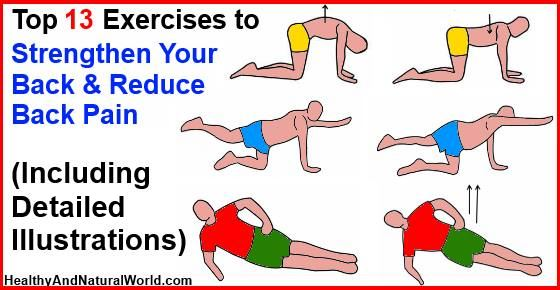 Top 13 Exercises to Strengthen Your Back and Reduce Back Pain (Including Detailed Illustrations)