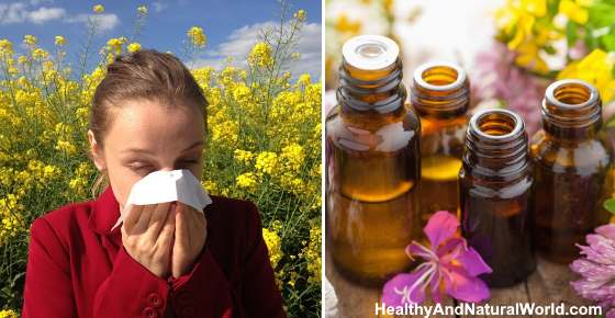 The Top 15 Essential Oils for Allergies