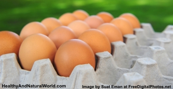 Do You Throw Away Egg Shells? After Reading This Article You Will Never Do That Again!