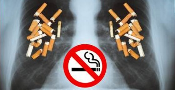 Smoking Just 60 Cigarettes: What It Does to Your Lungs + How to Quit Smoking Naturally