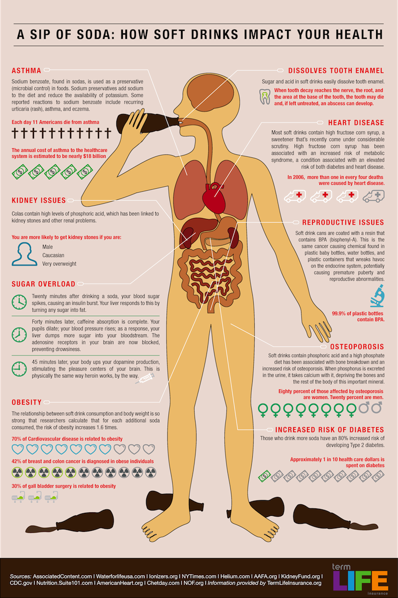 effects of soda on the human Find patient medical information for sodium bicarbonate oral on webmd including its uses, side effects and safety, interactions, pictures, warnings and user ratings.