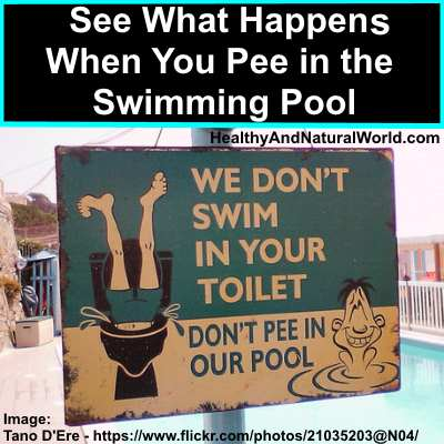 See What Happens When You Pee in the Swimming Pool