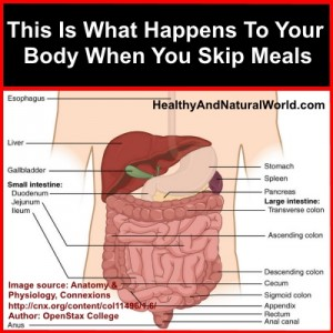 the effects skipping breakfast has on Let's be counterintuitive for a moment and explore why skipping breakfast may be more beneficial for you in  your body already has the tools to naturally.
