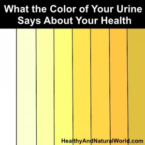 What Can Your Urine Tell You about Your Health