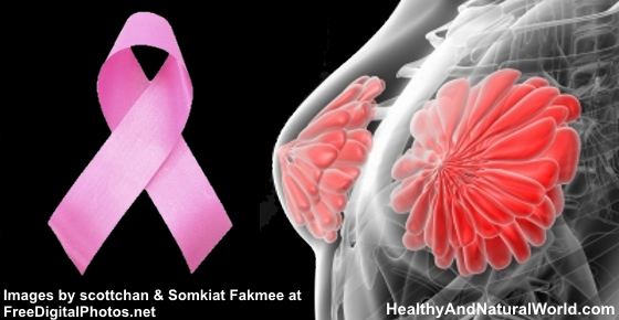 The Best 7 Foods for Breast Cancer Prevention