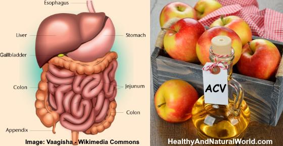 1 Tbsp. of ACV & Honey can Fight these 16 Health Problems