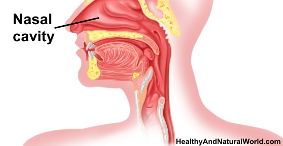 how to clear a stuffy nostril