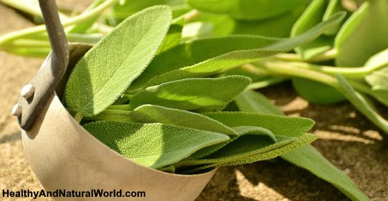 What Happens to Your Body When You Consume Sage