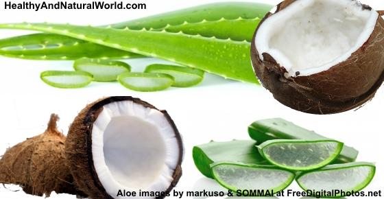 The Health Benefits Of Aloe Vera Amp Coconut Oil Mixture