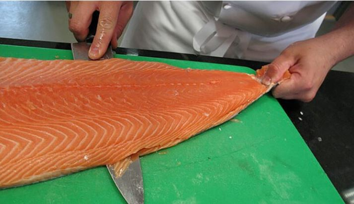 Farmed Salmon is Toxic