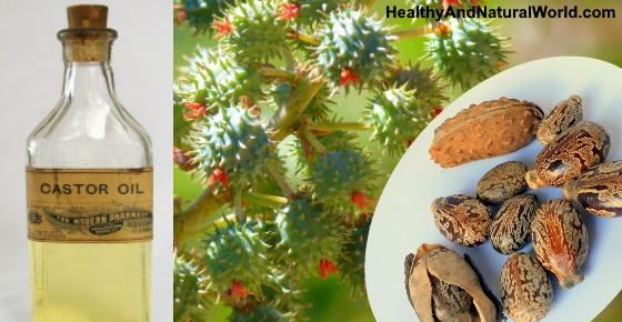 The Amazing Health Benefits and Uses of Castor Oil