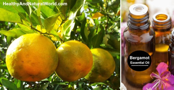 Bergamot Essential Oil - Health Benefits and Uses