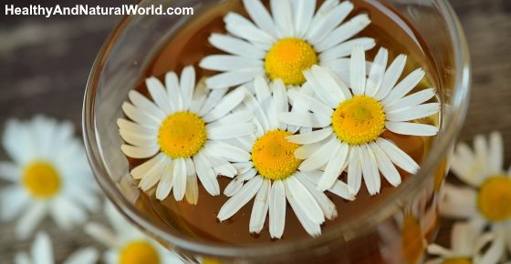 Chamomile Tea Benefits and How to Use It