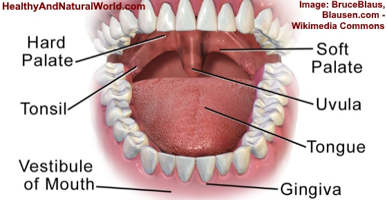 Swollen Uvula - Causes, Symptoms and Home Remedies