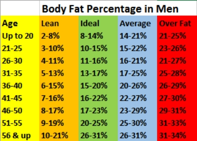 body fat chart Men