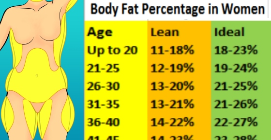 body fat percentage caliper chart