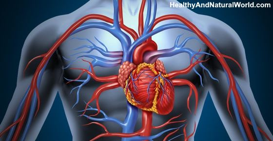 Where is the Heart Located? (Including Heart Attack Symptoms)