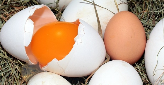 How Many Calories Are in An Egg? And Why You Should Eat More Eggs