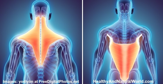 Effective Treatments for Pulled, Strained or Torn Muscle in Back