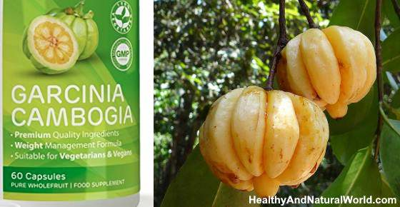 The Truth about Garcinia Cambogia Based on Science