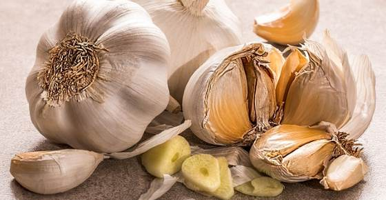 Medicinal Health Benefits of Garlic (Raw, Supplement)