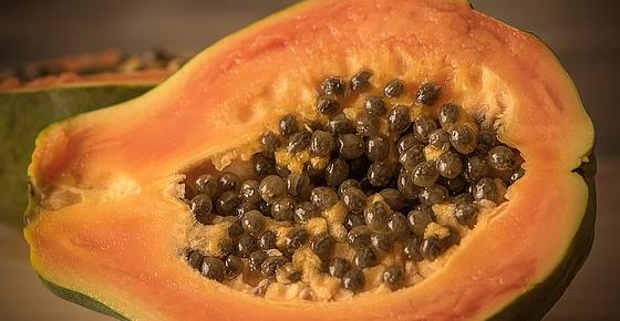 Scientifically Proven Health Benefits of Papaya (Fruit) + Uses for the Seeds