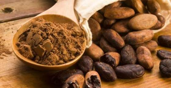 Scientifically Proven Health Benefits of Cacao Powder and Dark Chocolate