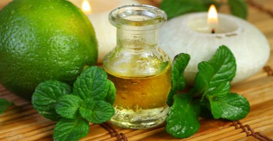 Proven Uses and Benefits of Peppermint Oil (Peppermint Essential Oil)