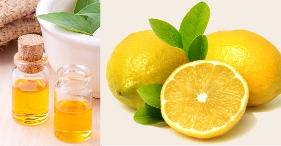 Scientifically Proven Benefits and Uses of Lemon Oil (Lemon Essential Oil)