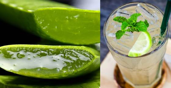 Proven Benefits and Side Effects of Drinking Aloe Vera Juice (Science Based)