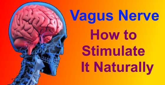 Vagus Nerve: Function and How to Stimulate It Naturally (Research Based)