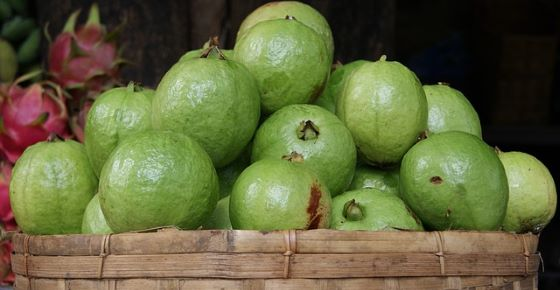 Health Benefits of Guava Fruit and Leaves & How to Eat Guava