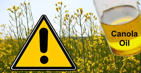Canola Oil Dangers: Why It's Bad for You According to Studies