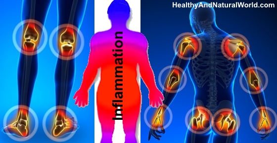 Inflammatory Foods: Proven Foods to Avoid that Cause Inflammation