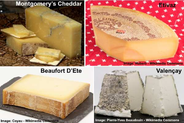 Fancy or gourmet cheeses: