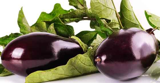 Health benefits and nutrition of eggplant