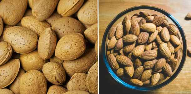 picture of almonds