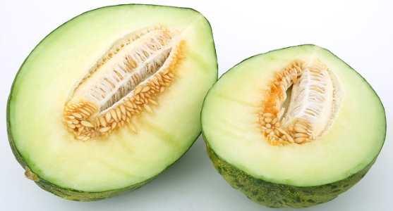 Type of melon: Honeydew