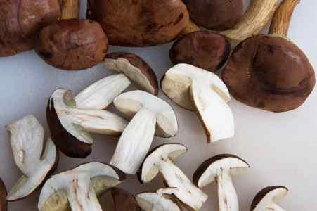Mushrooms are used as vegetables
