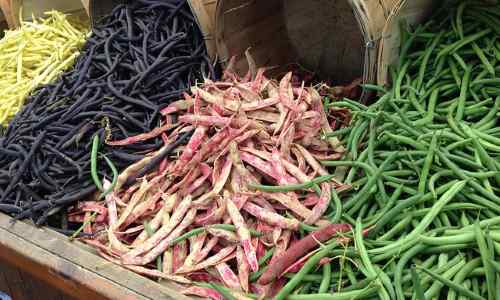 Types of vegetables: examples of podded vegetables