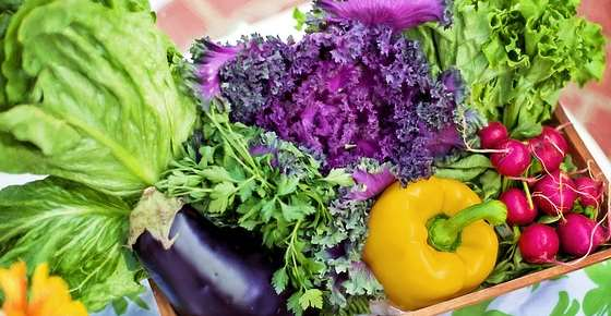 Types of Vegetables: Categories and Vegetable List