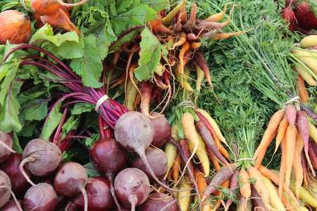 Types of vegetables: examples of roots and tubers